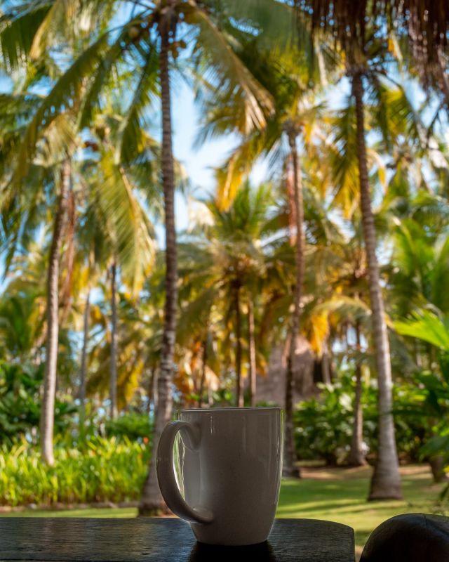 ¡Buenos días desde el Paraíso!  Hace unos meses trabajaba en las fotografías de este hotel. Una gema escondida entre el Parque Tayrona y Palomino.  En mis siguientes post te mostraré porque este lugar es obligatorio si vives en Santa Marta, Barranquilla o cualquier parte del mundo 😍